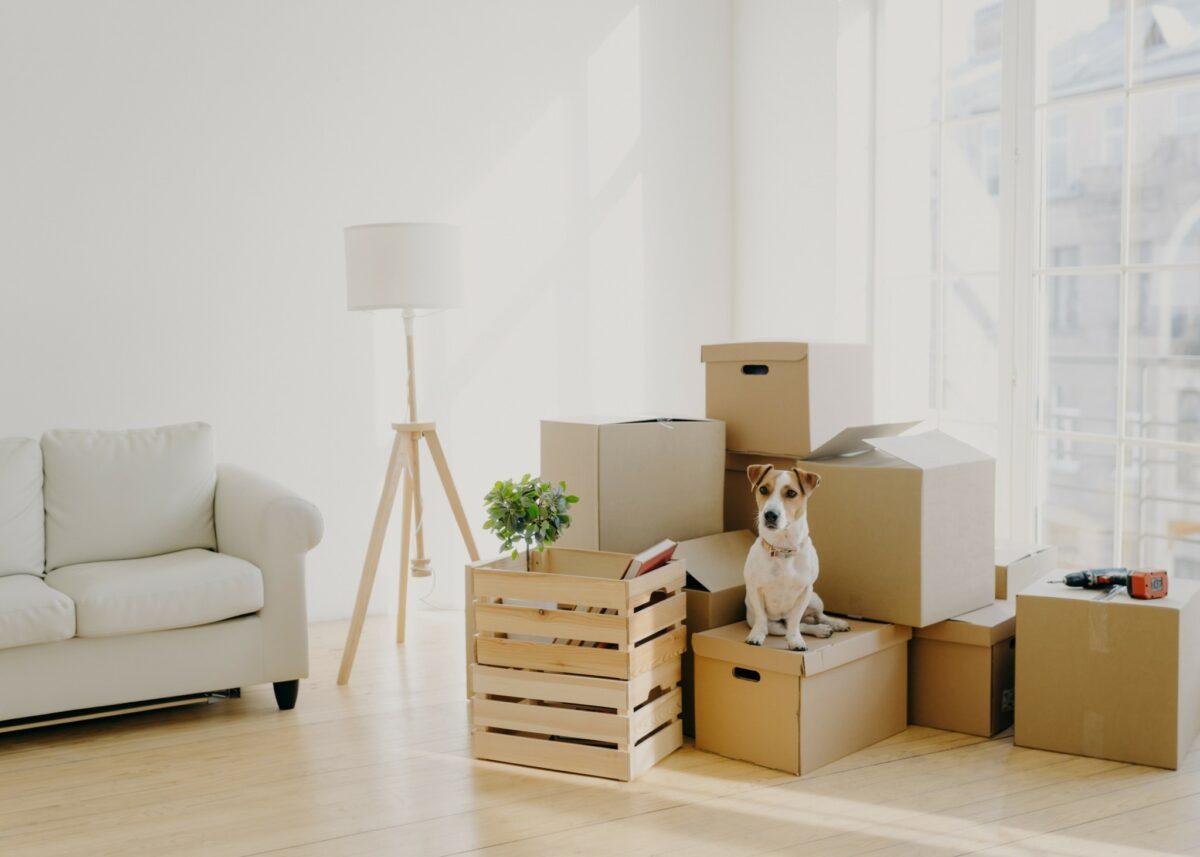 un déménagement